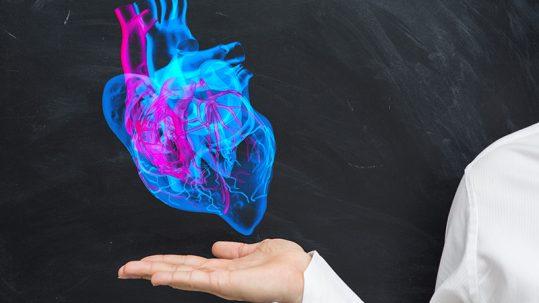 MicroRNA Discovery in Mice Could Prevent Heart Attack, Stroke